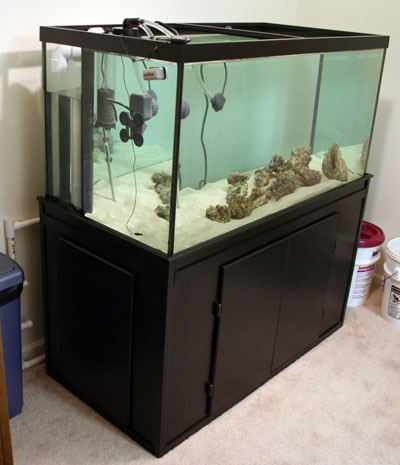120g Tank Full and Clear Angle