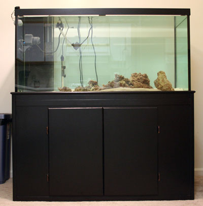 120g Tank Full and Clear